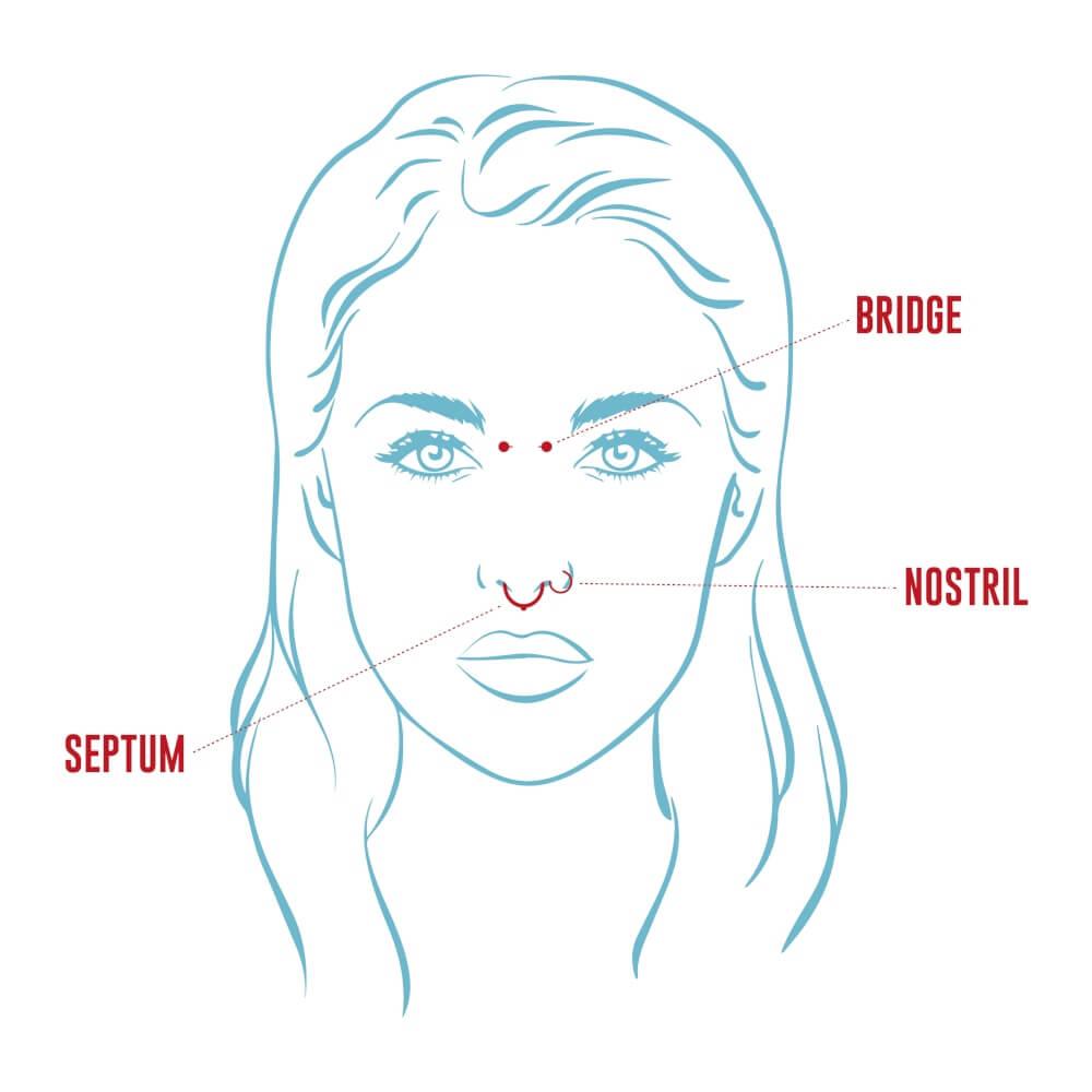Tipos de piercing en la nariz: Bridge, Nostril, Septum. Esquema Logia Barcelona