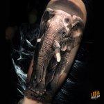 ¿Qué significan los tatuajes de elefantes?
