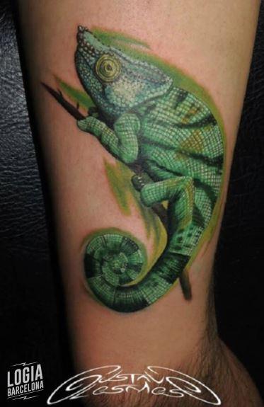 Tatuaje de Camaleones Realista color Gustavo Lesmes Logia Barcelona