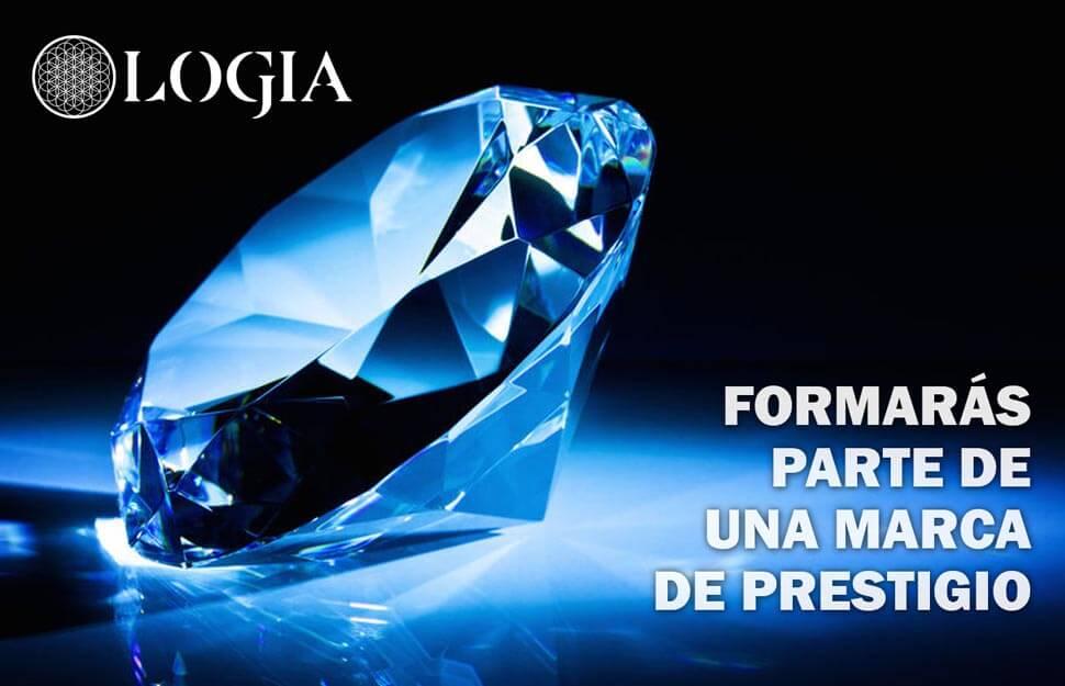 franquicias-logia-barcelona-marca-prestigio