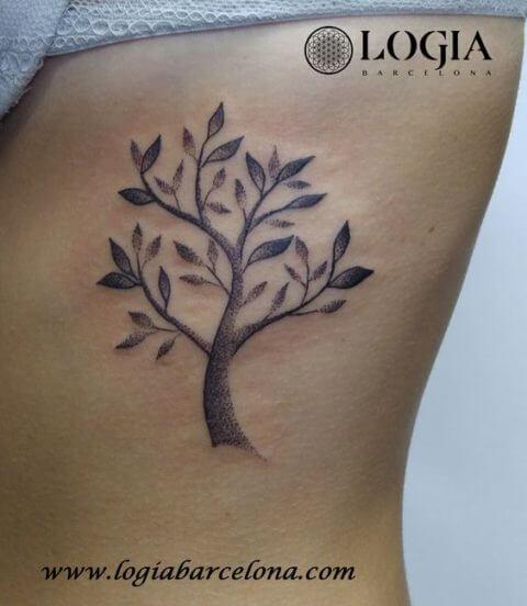 árbol del laurel