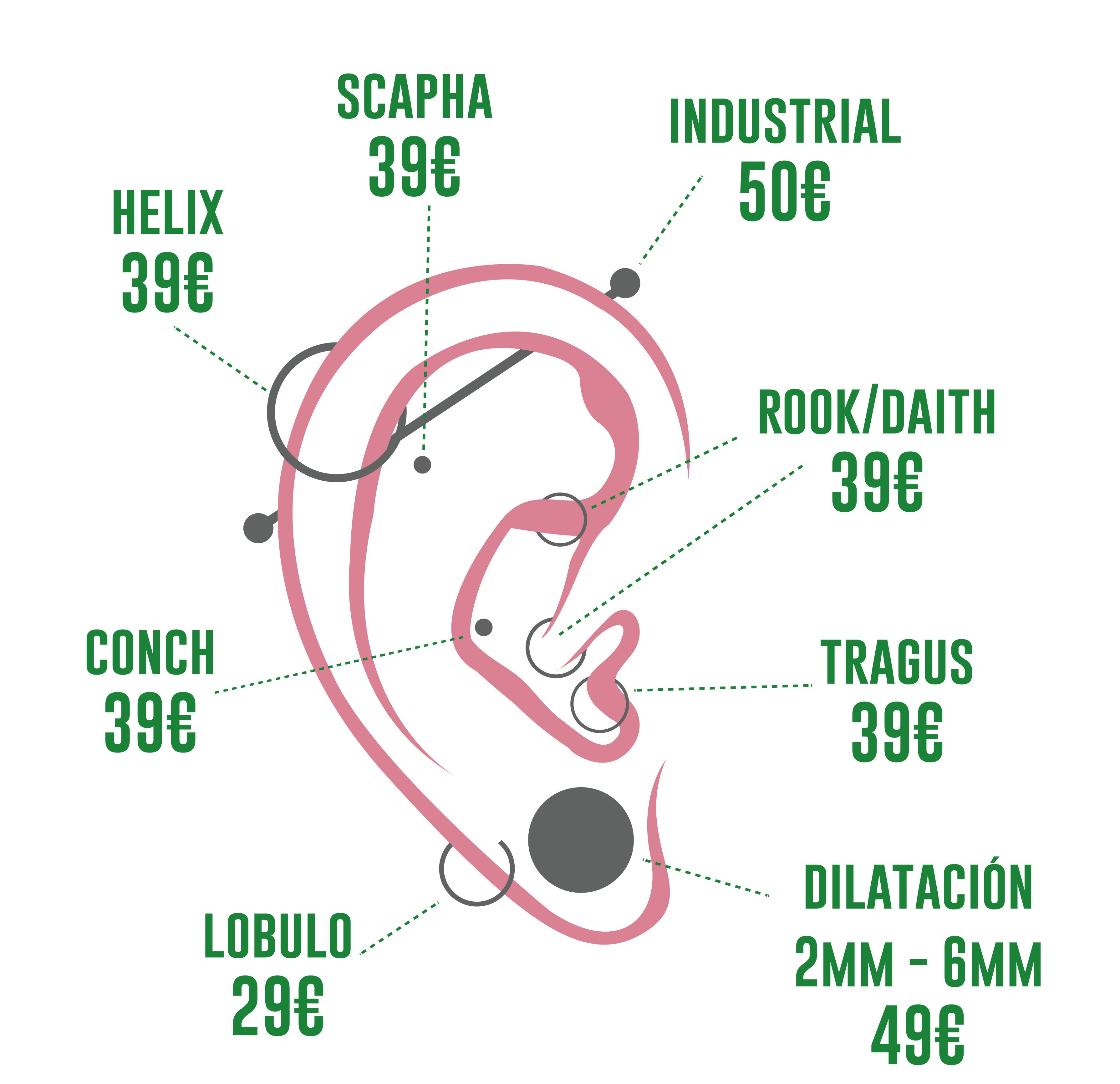 esquema piercing oreja precios piercing Logia Barcelona