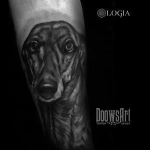 tatuaje-brazo-galgo-logia-barcelona-doows
