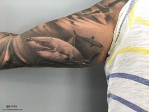 tatuaje-brazo-tiburones-logia-barcelona-grego