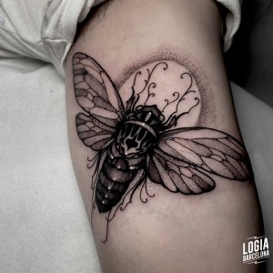 tatuaje_brazo_polilla_logiabarcelona_sulsu