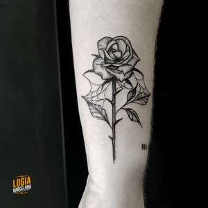 tatuaje_rosa_red_Logia_Barcelona_dotwork_Sulsu