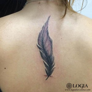 walk-in tatu pluma